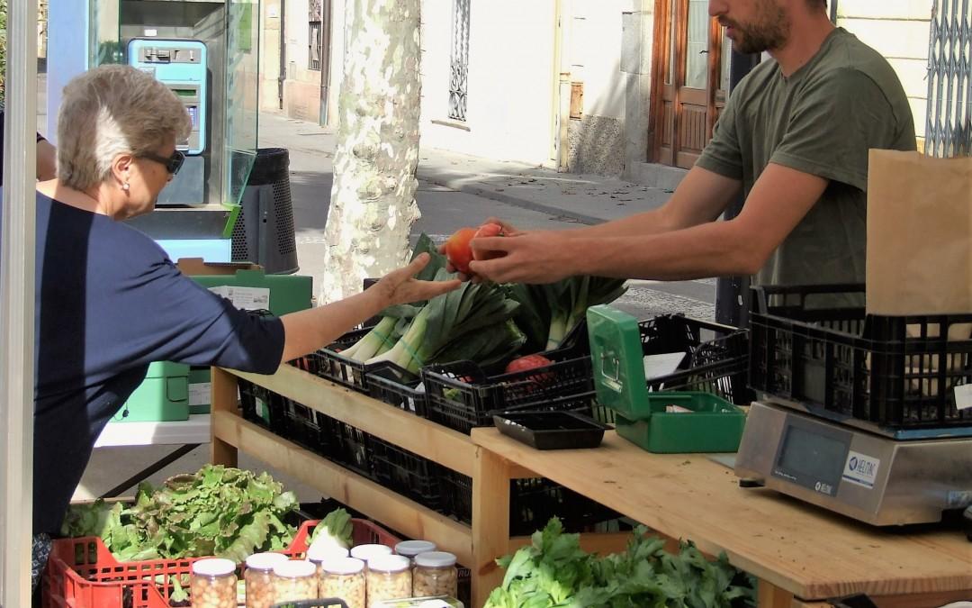 Jornada PATT. Casos d'èxit de la Dinamització Local Agroecològica