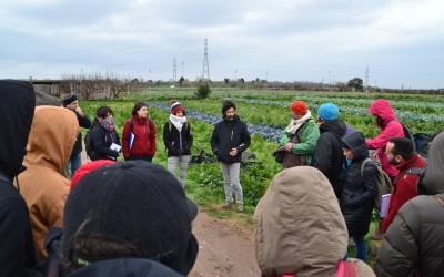Comença la III edició de la Diplomatura de Postgrau en Dinamització Local Agroecològica.
