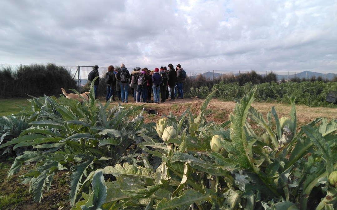 Torna el Postgrau en Dinamització Local Agroecològica (VI Edició; UAB)