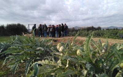 La IV edició del postgrau arrenca amb la visita al Parc Agrari del Baix Llobregat