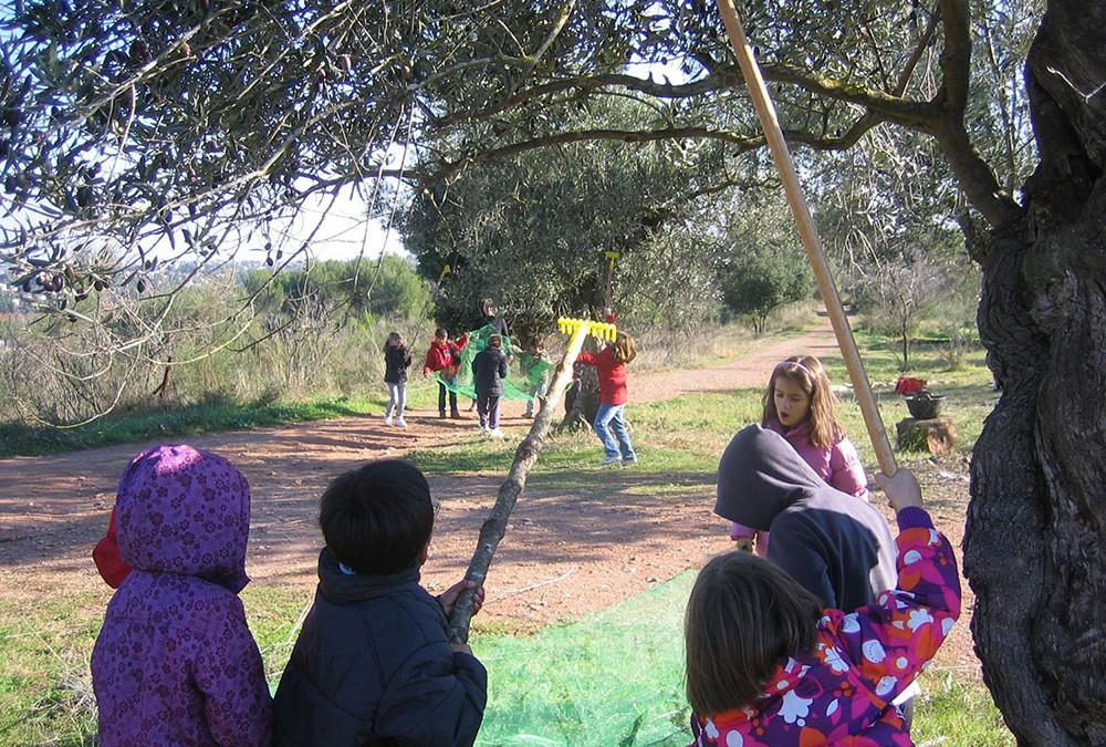 13 de desembre: jornada PATT. Menjadors escolars ecològics o agreocologia escolar?